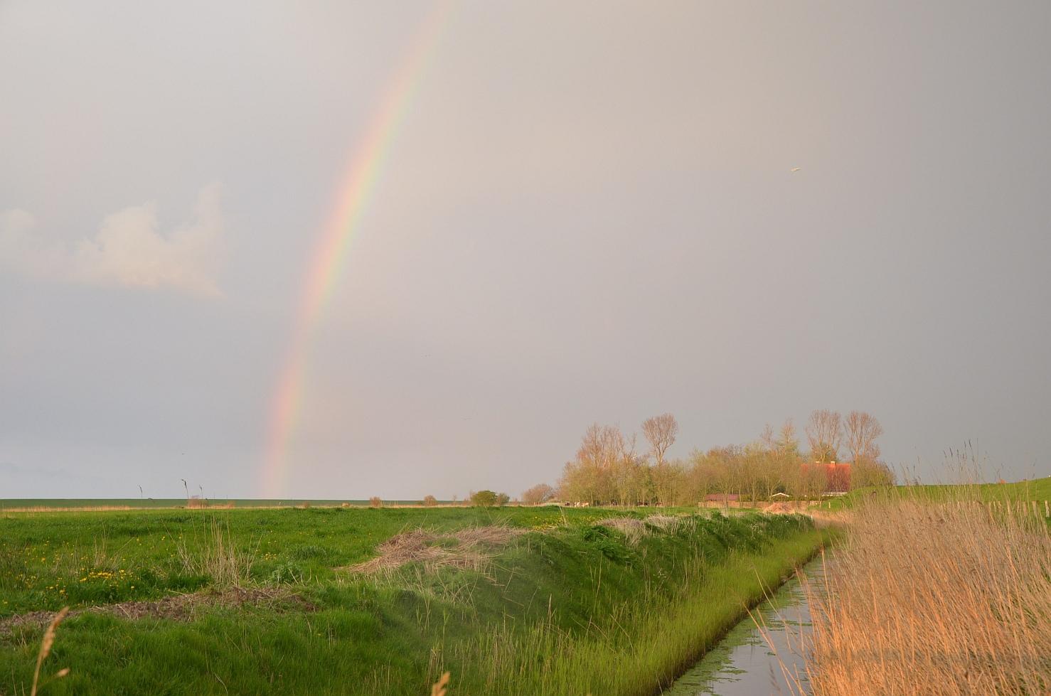 Regenbogen auf Fehmarn.
