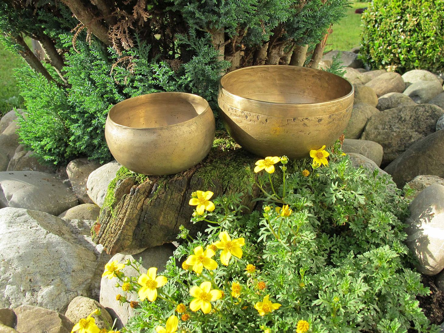 Tibet Yak-Bowls